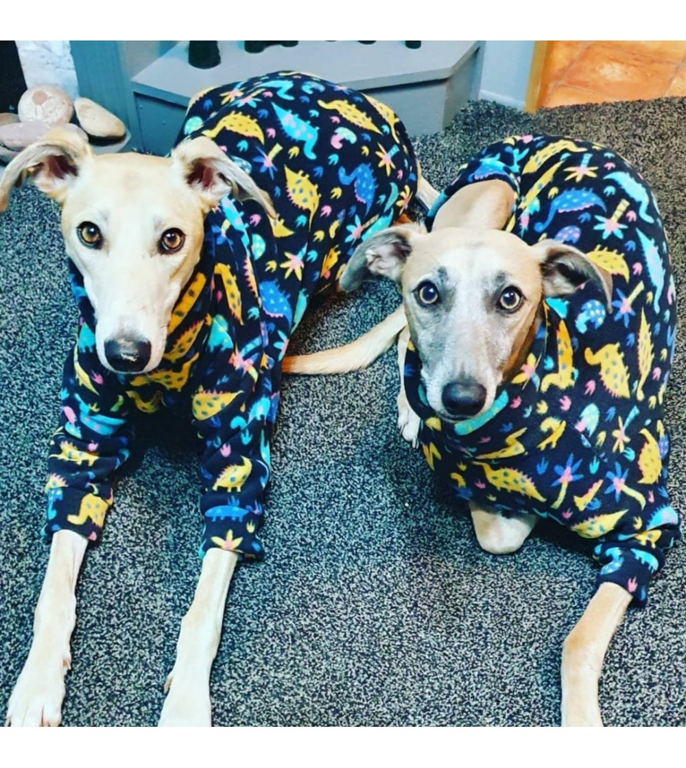 NEW 2 LEGS JUMPERS