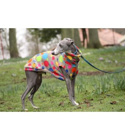 Spring Fleece Vest