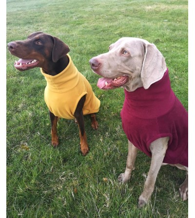 Pointer & Doberman VEST
